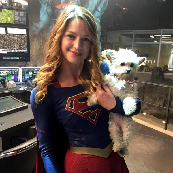 Melissa Benoist and her dog